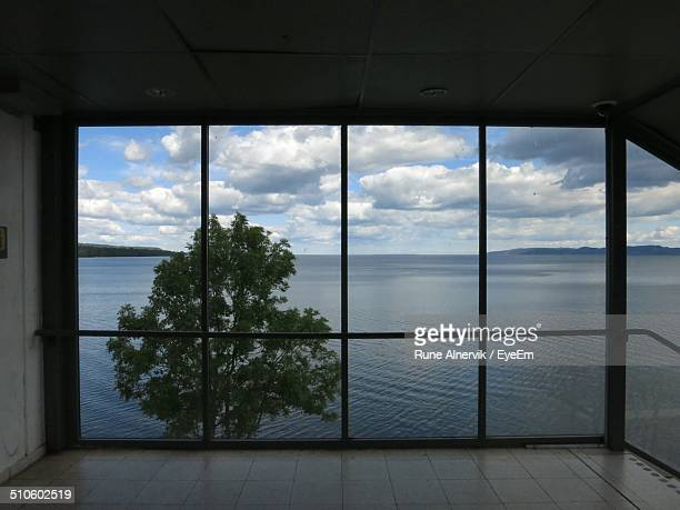 Scenic view of tree and sea through glass window