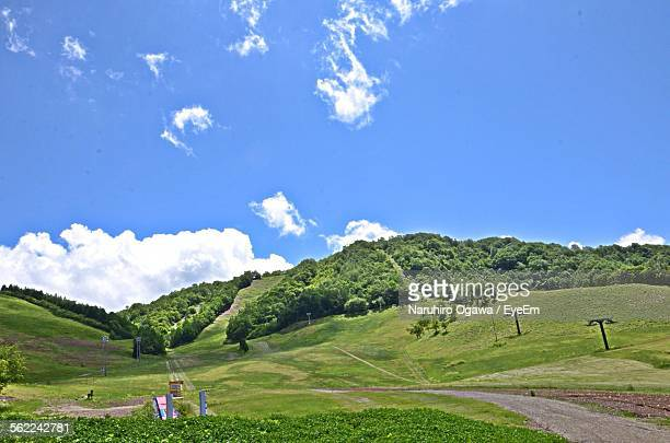Scenic View Of Tree Mountain Against Sky
