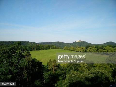Scenic View Of Trees Growing On Hill Against Sky