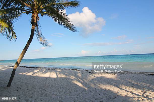 Scenic View Of Tropical, Empty Beach