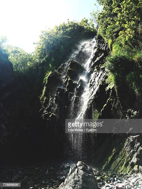 Scenic View Of Waterfall In Forest Against Sky