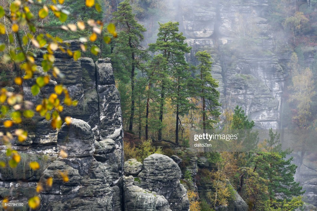 Scenic view over Bastei hiking area in Saechsische Schweiz with sandstone crags and pillars, taken in late October,  Saxon Switzerland National Park, Saxony, Germany, Europe. : Stock Photo