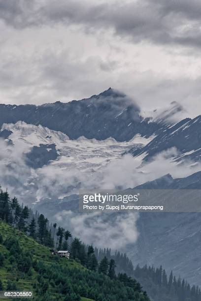 Scenics of house with pine tree forest on the mountain with glacier of himalayan range in background,manali,india