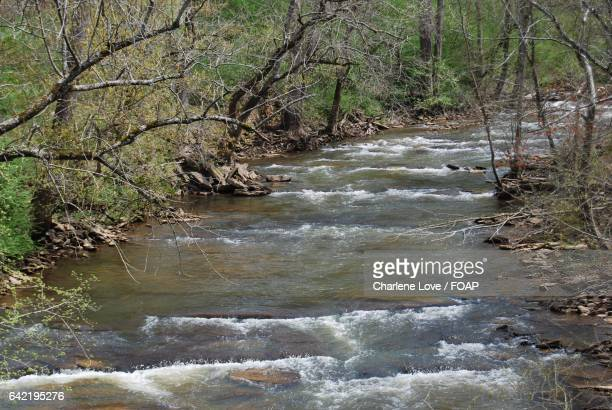 Scenics view of river at chattahoochee