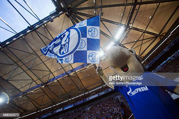 Schalke mascot Erwin during the Bundesliga match between FC Schalke 04 and 1 FSV Mainz 05 at VeltinsArena on September 13 2015 in Gelsenkirchen...