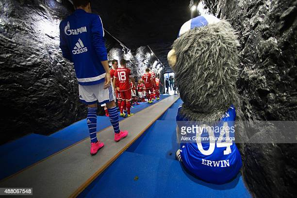 Schalke mascot Erwin sits in the tunnel as the players walk out for the Bundesliga match between FC Schalke 04 and 1 FSV Mainz 05 at VeltinsArena on...