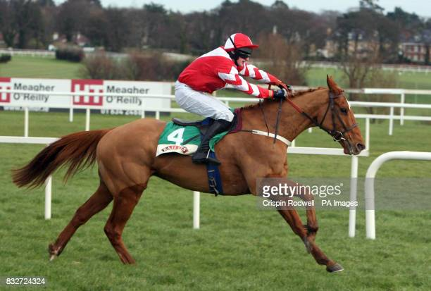 Schindlers Hunt ridden by Roger Loughran goes on to win the Baileys Arkle Perpetual Challenge Cup Novice Chase at Leopardstown Racecourse