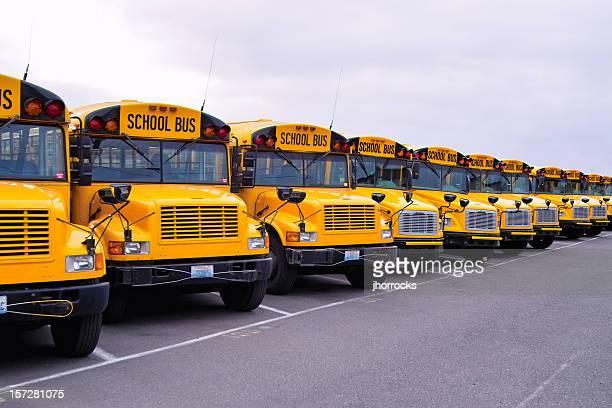 School Bus Lineup