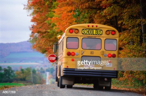 School bus on country road : Stock Photo
