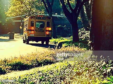 School bus parked on street : Stock Photo