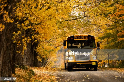 School Bus : Stock Photo