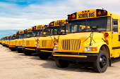 row of yellow school buses lined up in a parking lot