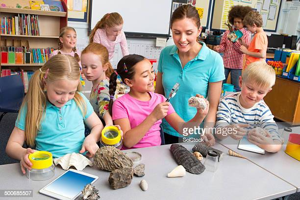 School Children in Science Lesson