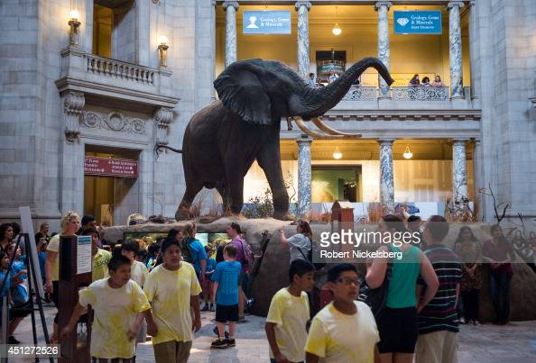 School children walk through the Smithsonian Natural History Museum June 3 2014 in Washington DC