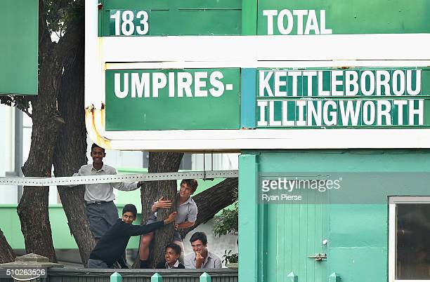 School kids climb a tree to see into the ground during day four of the Test match between New Zealand and Australia at Basin Reserve on February 15...