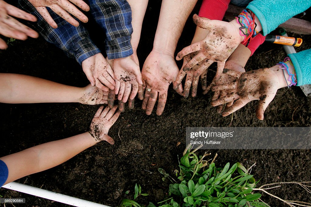 School kids from McKinley Elementary School show their dirty mudd covered hands after planting seeds at the Octopus Garden on Tuesday March 22 2011...