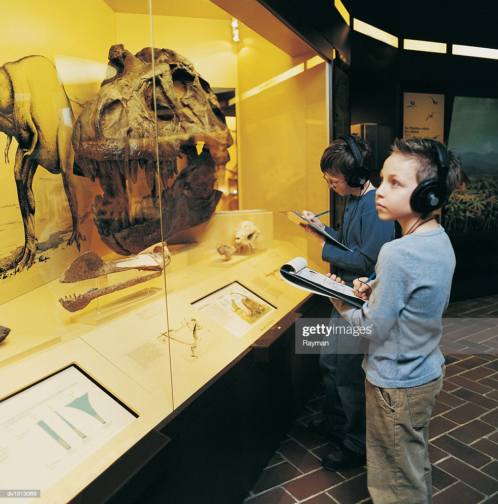 Schoolboys in a Museum Looking at Dinosaur Bones in a Vitrine and Listening to Headphones : Stock Photo