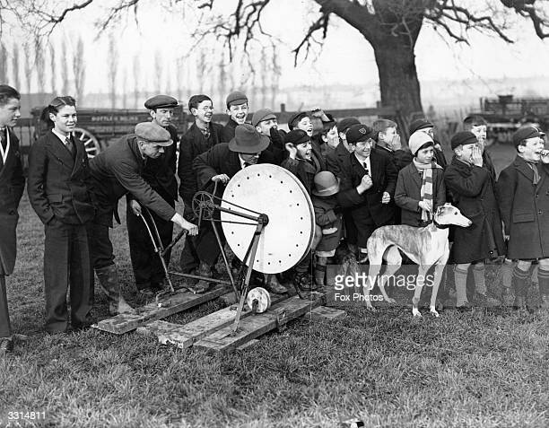 Schoolboys watching greyhound racing at a track in Catford London