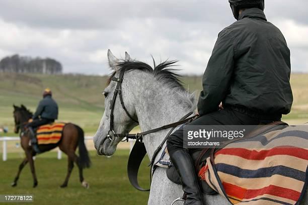 Enseignement des chevaux
