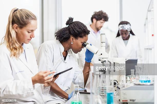 科学研究所