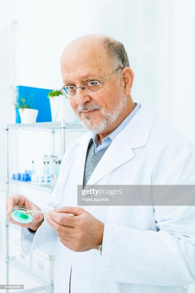 Scientific investigator holding petri dish : Stock Photo