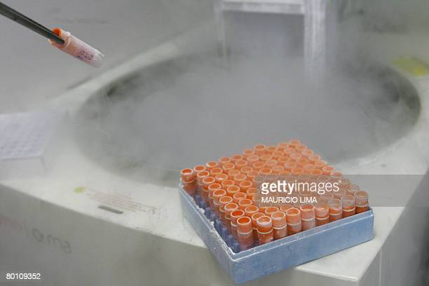 A scientific researcher handles frozen embryonic stem cells in a laboratory at the Univestiry of Sao Paulo's human genome research center in Sao...