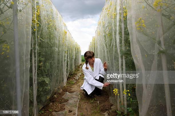 Scientist at outdoor work
