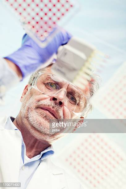 Scientist Examining and using multi channel pipette in lab experiment