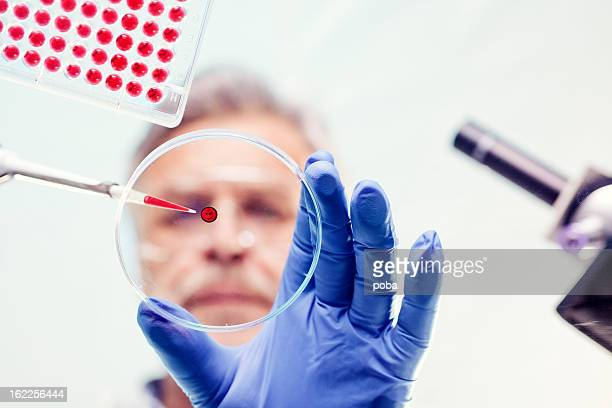 Scientist Examining and using pipette in lab experiment