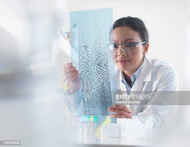 Scientist examining DNA autoradiogram
