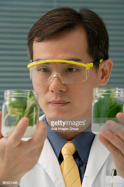 Scientist examining jar with plant samples