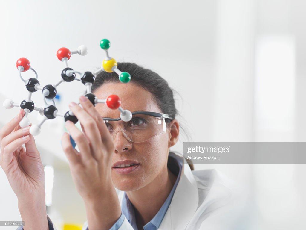 Scientist examining molecular model : Stock Photo