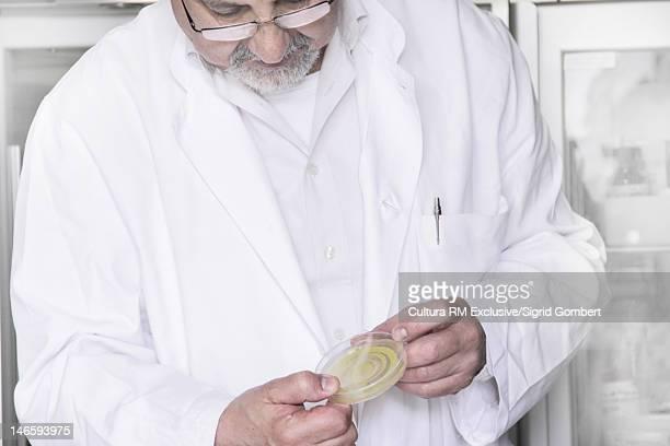 Scientist examining sample in lab