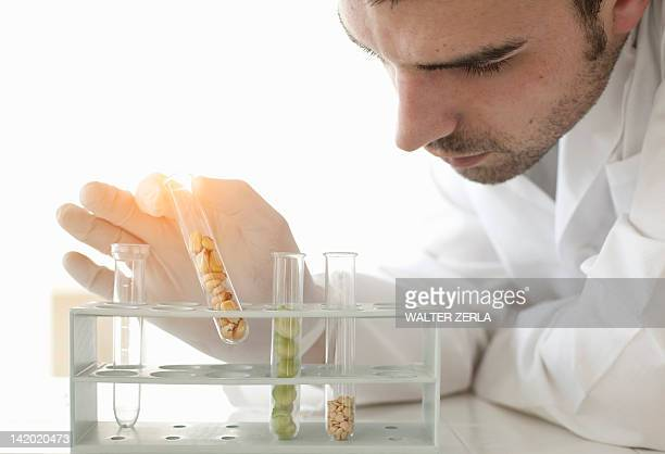 Scientist examining seeds in test tubes