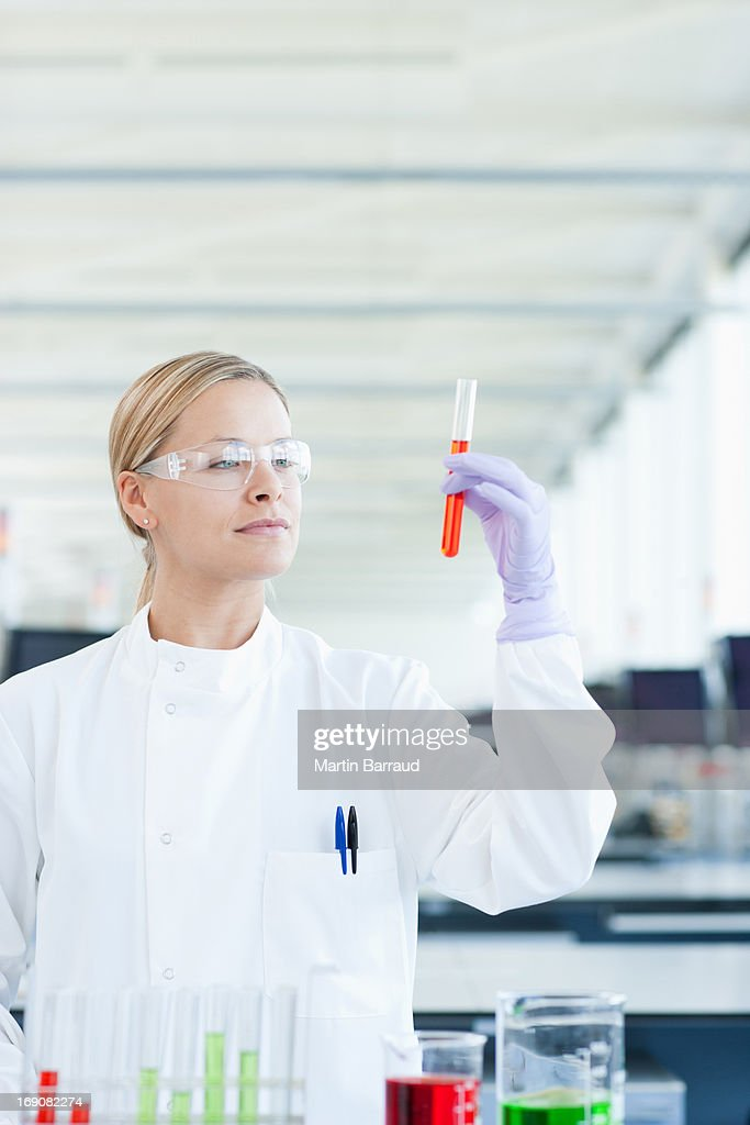 Scientist examining test tube in lab : Stock Photo
