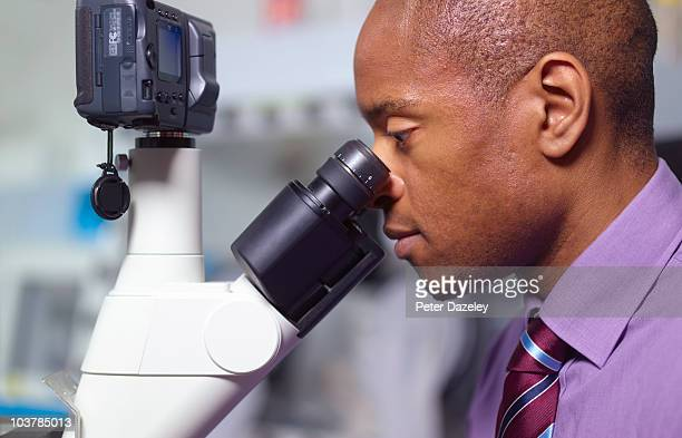 Scientist examining through microscope