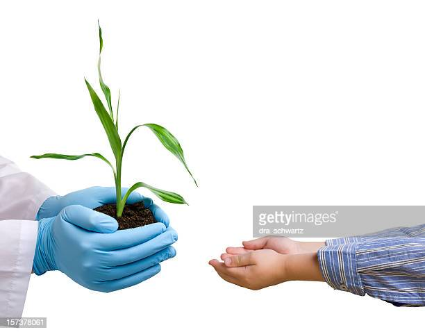 Scientist giving a plant to child