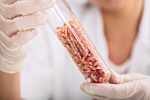 Scientist Hand In Protective Glove Holding Raw Artificial Grown Meat In Laboratory Test Tube