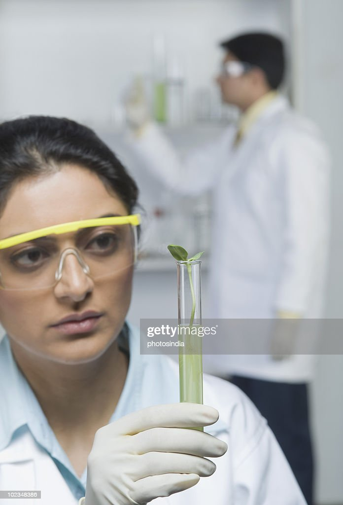 Scientist holding plants in test tube