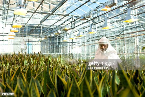 Scientist in clean suit working in greenhouse
