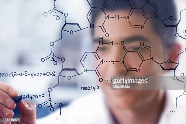 Wissenschaftler im Labor arbeiten mit DNA-Struktur