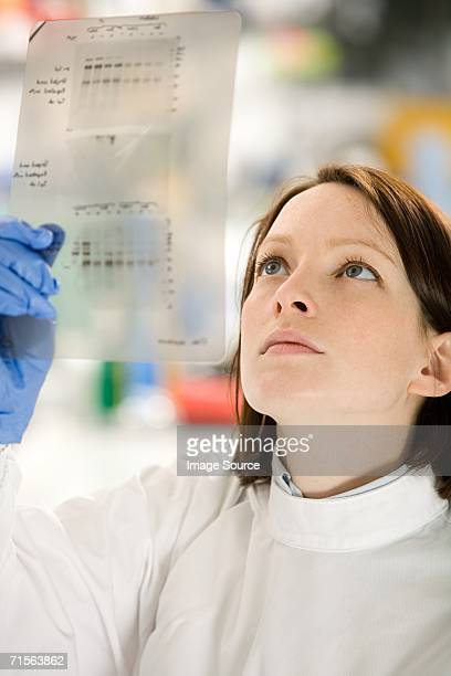 Scientist looking at DNA