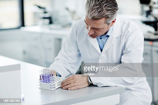 Scientist looking at laboratory samples : Stock Photo