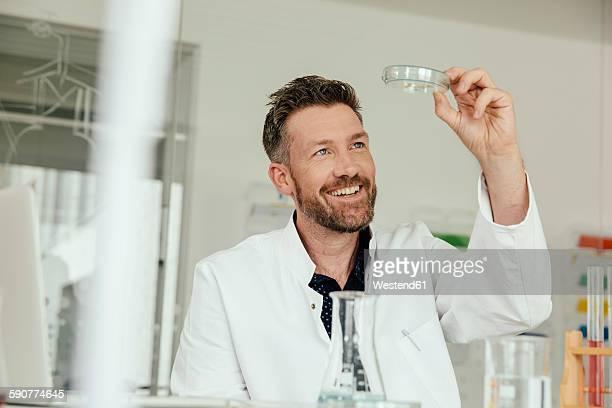 Scientist looking at petri dish in lab
