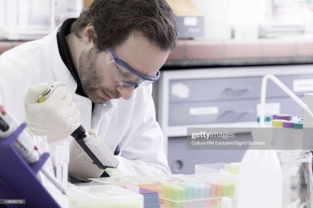 Scientist putting liquid into tubes : Stock Photo