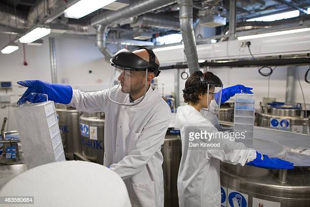 Scientist remove biological samples from a liquid nitrogen storage tank at the Cancer Research UK Cambridge Institute on December 9 2014 in Cambridge...