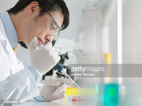 Scientist using pipette and multiwell dish in laboratory