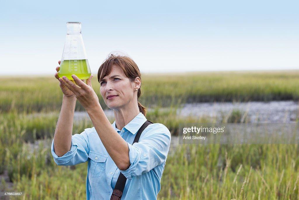 Scientist working in field