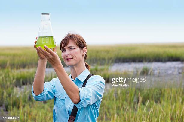 Scientist working in field