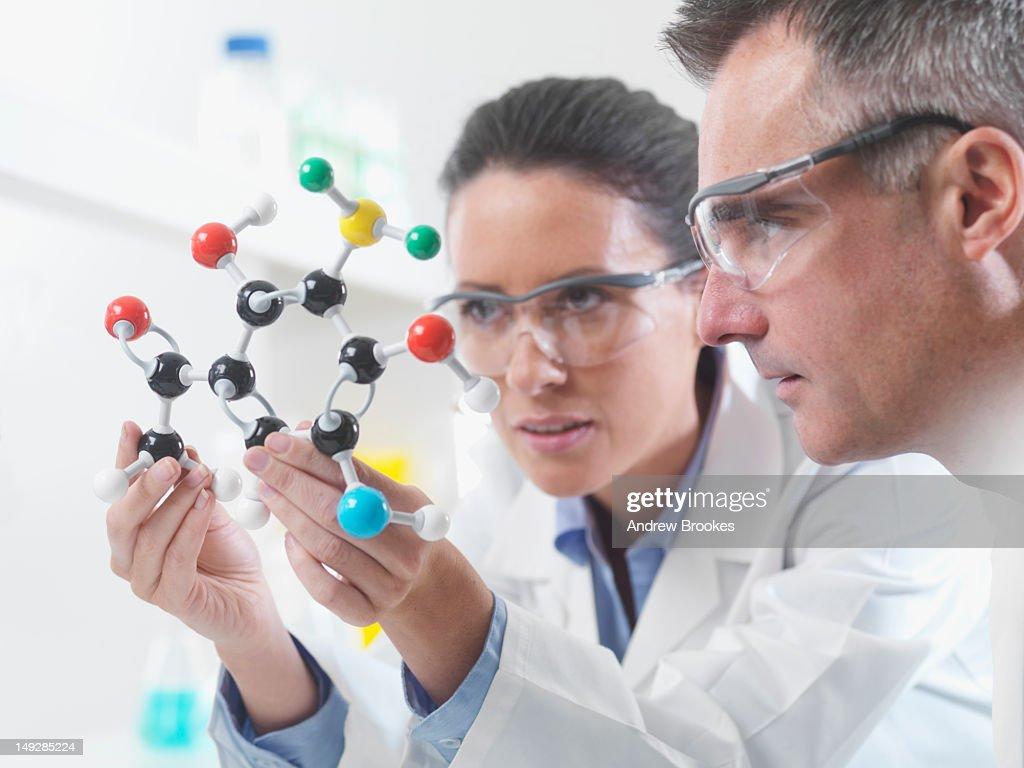 Scientists examining molecular model
